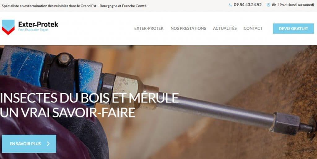 Dératisation-Désinfection-Désinsectisation-à-Mulhouse-en-Alsace-Exter-Protek